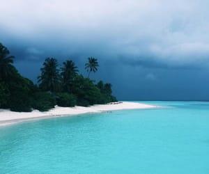 ocean, beach, and nature image