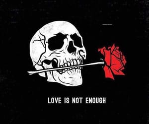 love is not enough image