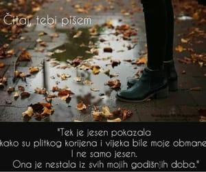 balkan, jesen, and citat image
