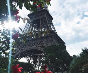 paris, flowers, and travel image
