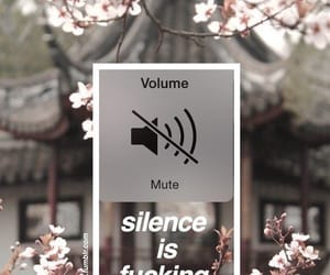 wallpaper, silence, and flowers image