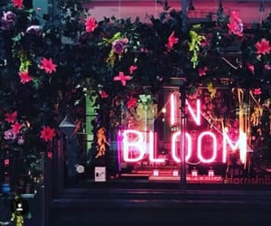 neon, flowers, and pink image