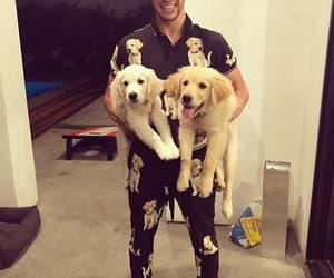 cameron dallas, boy, and puppies image