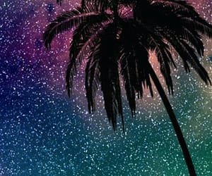 stars, palm, and background image