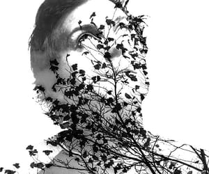 double exposure, frank, and mcr image