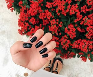 flowers, black, and nails image