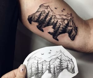 arm, tattoo, and bear image