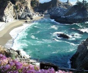 beach, flowers, and sea image