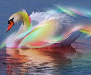 fantasy, swans, and art image