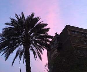 cairo, sunset, and egypt image