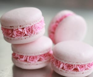food, pink, and rose image