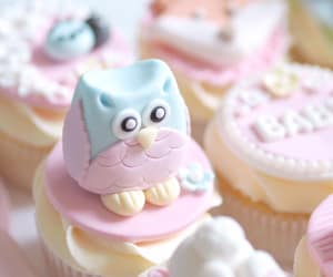 animals, owl, and cupcakes image