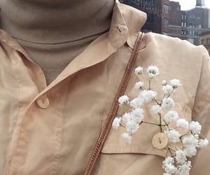 flowers, aesthetic, and brown image