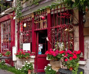 flowers, paris, and red image