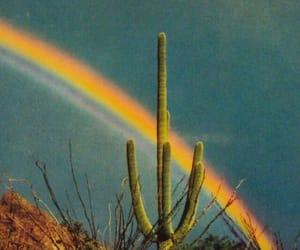 rainbow, cactus, and indie image