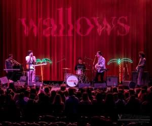 wallows, cole preston, and band image