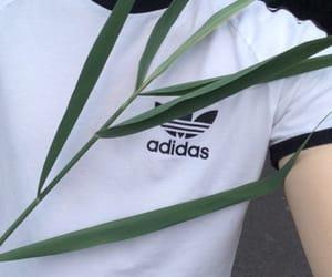 adidas, grunge, and white image