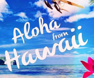 Aloha, tropical, and colorful image
