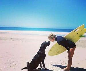 beach, summer, and dog image