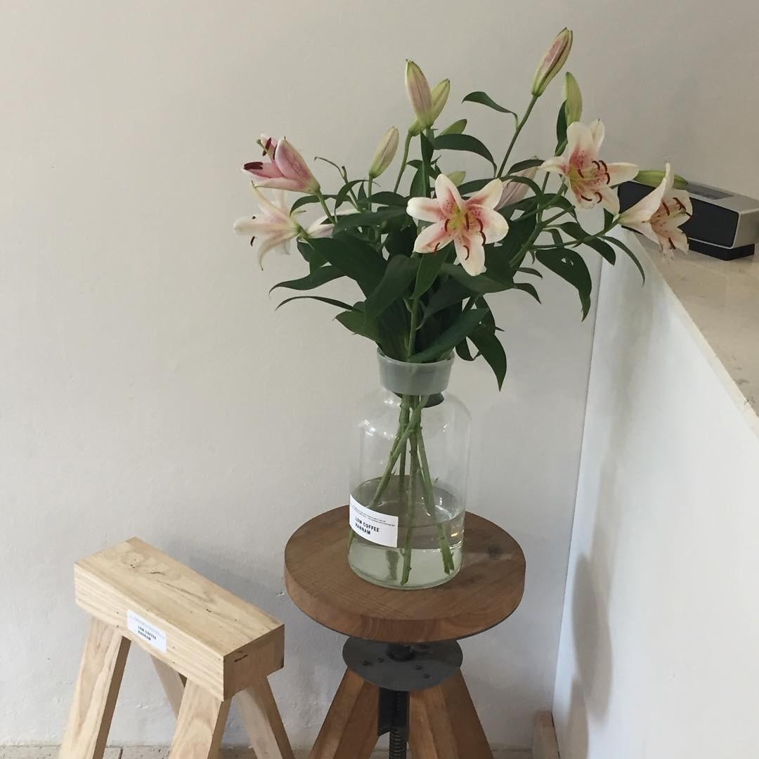 flowers, aesthetic, and minimalism image