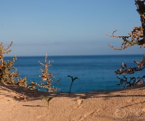 lanzarote, little, and sea image