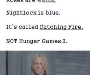catching fire, thg, and haymitch image