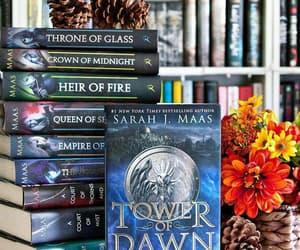 books, sarah j maas, and read image