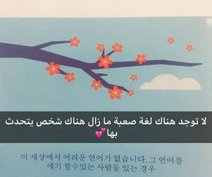arabic, korean, and kpop image