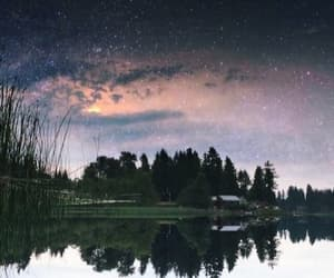 forest, landscape, and stars image
