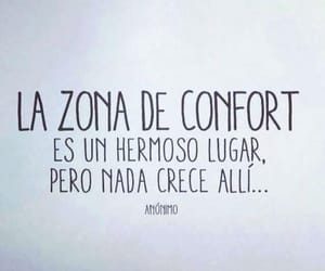 frases and zona de confort image
