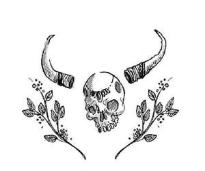 skull, tatoo, and taurus image