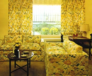 color, couches, and curtains image