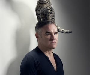 cat, moz, and morrissey image