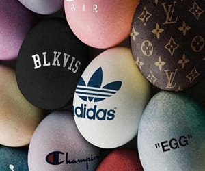 adidas, champion, and eggs image