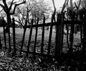 abandoned, fence, and lostplace image