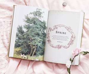 aesthetic, book, and flower crown image