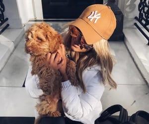 dog, fashion, and girl image