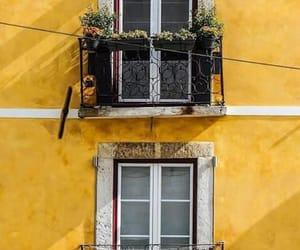amarelo, casa, and flores image