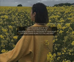 aesthetic, Lyrics, and short image