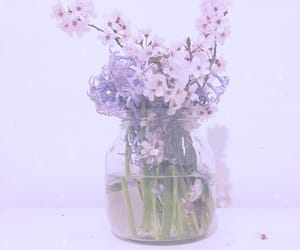 flowers and spring image
