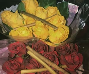 blunt and rose image