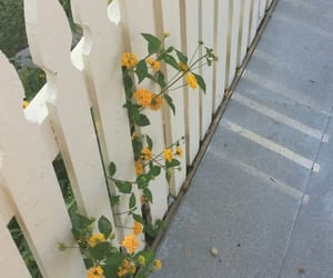 fence, flower, and garden image
