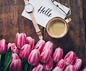 coffee, drink, and hello image