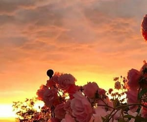 beautiful, clouds, and flowers image
