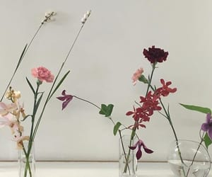 aesthetic, flowers, and minimal image