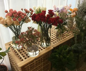 aesthetic, minimalism, and flowers image