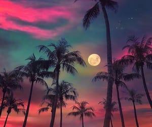 moon, palms, and purple image