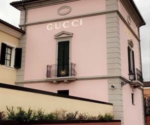 gucci and pink image