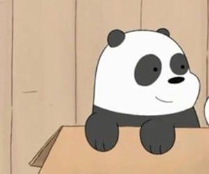 bear, icon, and panda image