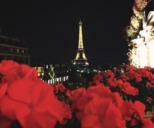 paris, flowers, and night image